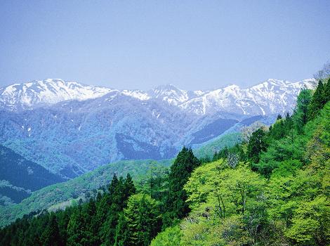 秋田県 山本郡八峰町